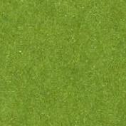 Vert anis