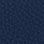 Bleu Grainé